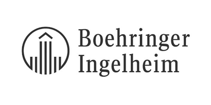Referenzen - Referenz Boehringer, Positioning mit Mag. Lorenz Wied, MBA