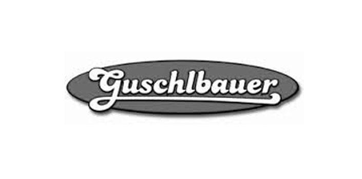 Referenzen - Referenz Guschlbauer, Positioning mit Mag. Lorenz Wied, MBA
