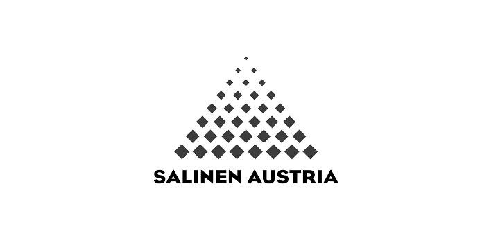 Referenzen - Referenz Salinen Austria, Positioning mit Mag. Lorenz Wied, MBA