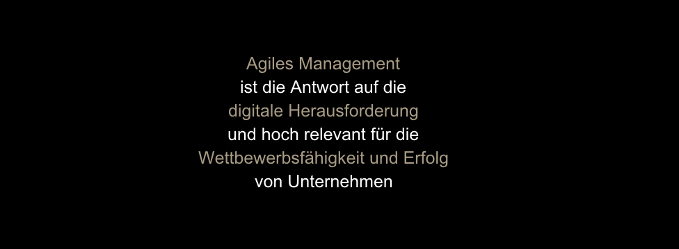 Agiles Management